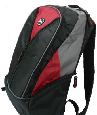 Buy Dell Sports 15.6 inch Backpack: Bags