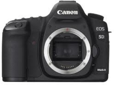 Buy Canon EOS 5D Mark II SLR: Camera