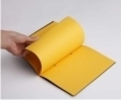 Buy Rubberband Slim Series B5 Notebook: Diary Notebook