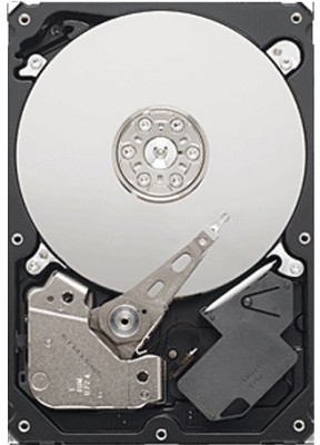 Seagate Pipeline HD (ST3500312CS) 500GB Desktop Internal Hard Drive