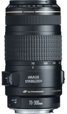 Buy Canon EF 70 - 300 mm f/4-5.6 IS USM Lens: Lens