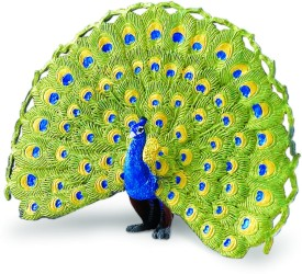 Safari Ltd Wow Peacock