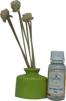 Asian Aura Asian Aura Reed Diffuser Orange Liquid Air Freshener