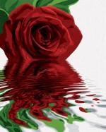 Schipper Art & Craft Toys Schipper Red Rose