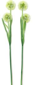 Bengal Blooms Snowball Green Assorted Artificial Flower