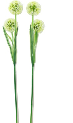 Bengal Blooms Snowball Green Assorted Artificial Flower