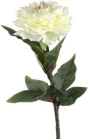 Flowers Forever New White Peony Artificial Flower