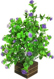 eMani Multicolor Wild Flower Artificial Flower  with Pot