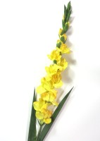 Importwala Importwala Yellow Assorted Artificial Flower