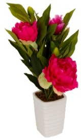 Flowers Forever Pink Peony Artificial Flower with Pot