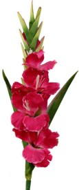 Gifts By Meeta Red Assorted Artificial Flower