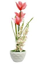 Bengal Blooms Cymbidium Orchid