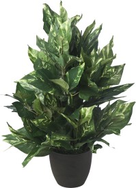Kusal Artificial Plant  with Pot