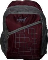 Nexxa Light Weight School Bag 18 L Backpack (Purple)