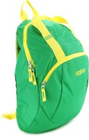 American Tourister Flint Backpack: Backpack