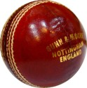 GM County Star Cricket Ball: Ball