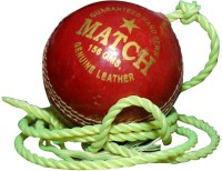 Priya Sports 2837A Cricket Ball - Size: 5, Diameter: 2.24 Cm (Pack Of 1, Red)
