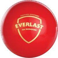SG Everlast Cricket Ball -   Size: 5,  Diameter: 2.5 Cm (Pack Of 1, Red)