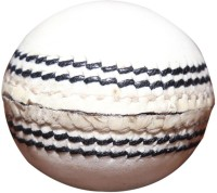 Priya Sports 2824A Cricket Ball - Size: 5, Diameter: 2.24 Cm (Pack Of 1, White)