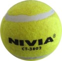 Nivia Cricket Tennis Ball - Pack Of 6, Yellow