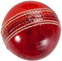 Reebok County Cricket Ball - Size: 7, Diameter: 2.5 Cm (Pack Of 1, Red)