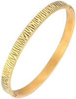 The Jewelbox Tiger Free Size Kada Stainless Steel Yellow Gold Plated Bracelet
