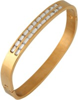 The Jewelbox Stainless Steel Yellow Gold Kada