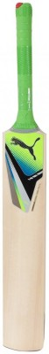 Puma Evospeed Chromium Force Gt Kashmir Willow Cricket  Bat (Short Handle, 1000-1100 g)