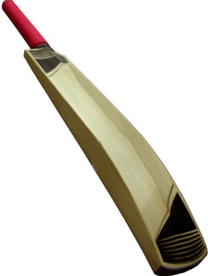 Lordz Fury English Willow Cricket  Bat (Short Handle, 900 g)
