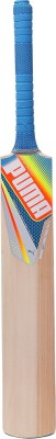 Puma Evospeed Gt Kashmir Willow Cricket  Bat (Short Handle, 1100-1150 g)