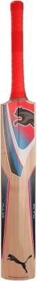 Puma Pulse GT Kashmir Willow Cricket  Bat (6)