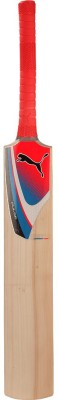 Puma Pulse GT Kashmir Willow Cricket  Bat (Short Handle)