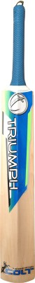 Triumph Brisk Kashmir Willow Cricket  Bat (4, 800-1000 g)