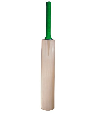 Sporton HITTER Poplar Willow Cricket  Bat (Short Handle, 800 g)