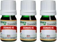 Natura Jatamansi (Nardostachys Jatamansi) Natural Essential Oil Pack Of 3 (15 Ml)