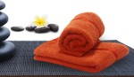 Story @ Home Story @ Home Cotton Hand Towel