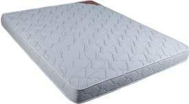 Kurlon Convenio Single Foam Mattress