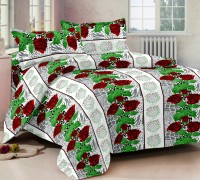 Story @ Home Cotton Printed Double Bedsheet 1 Bedsheet, 2 Pillow Cover, Multicolor - BDSE56EXVXC8CF6J