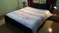 Jojo Designs Embroidered Double Quilt & Comforter Purple