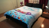 Jojo Designs Graphic Double Quilt Blue