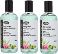 Aloe Veda Bergamot Calming Body Wash (900 Ml)