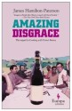 Amazing Disgrace: Book