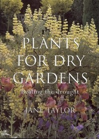 Plants for Dry Gardens: Beating the Drought (English) (Paperback)