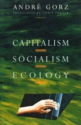 the pirate organisation an essay on the evolution of capitalism Evolution of capitalism economists mostly focused on the degree that government does not have control over markets (laissez faire), and on private property rights, while most of political economists focused on private property, wage labor, class and power relations.