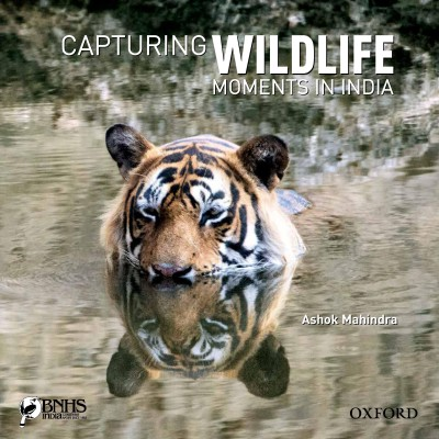 Capturing Wildlife Moments in India (English) price comparison at Flipkart, Amazon, Crossword, Uread, Bookadda, Landmark, Homeshop18