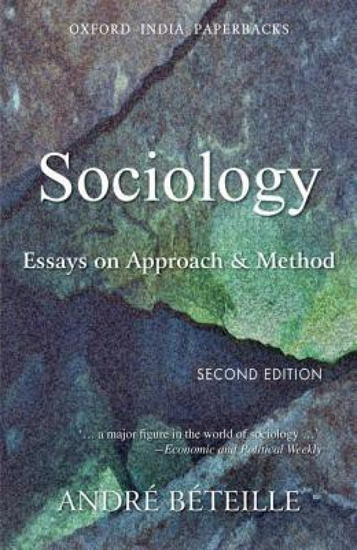 into the wild essay thesis proposal into the wild essay thesis proposal gegipfr research methods in sociology topics for paper