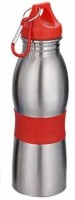 Veepee Steel Birdy 550 Ml Bottle, Shaker, Sipper, Flask (Pack Of 1, Red)