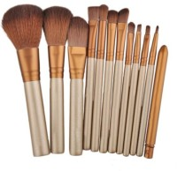 Puna Store 12 Piece Make Up Brush Set With Storage Box (Pack Of 12)