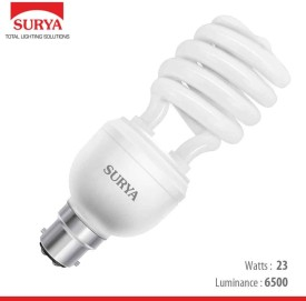 Ecosmart Spiral 23 W CFL Bulb