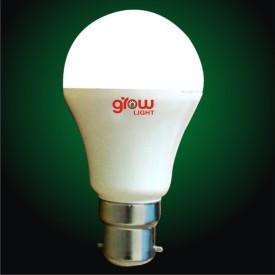 9W LED Premium Bulb (White)